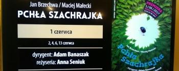 """""""PCHŁA SZACHRAJKA"""" W OPERZE"""